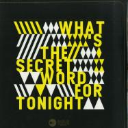Front View : Joe Metzenmacher - WHATS THE SECRET WORD FOR TONIGHT EP - Heideton Records / HR017