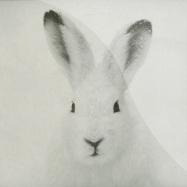 Front View : Carsten Rausch - BALLIN EP (MOLLONO.BASS REMIX) - Acker Records / acker026