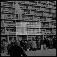 Front View : Hannibal Peck - ZENOBUURT TORRIES LP (TAPE + MP3) - TH Tar Hallow / HALLOW3