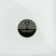 Front View : Alec Troniq & Raumakustik - PIANOLA MANIA - Deich Records / deich006