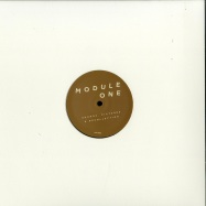 Front View : Module One - SOUNDS, PICTURES & RECOLLECTIONS (VINYL ONLY) - Another / ART004