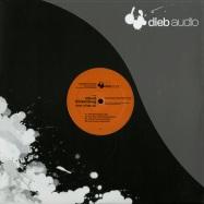 Front View : Roland Klinkenberg - NOW WHAT EP (JOHN DALAGELIS REMIX) - Diebaudio / da023