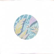 Front View : Paulo Rita - BUSCANDO (7 INCH) - MSLX Recordings / MSLX017
