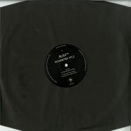 Front View : Busz TM aka Pier Bucci / Oskar Szafraniec - SYMMETRY PT.2 (INCL. ROMMEK, KUBA SOJKA, DJ SCHWA REMIXES) (VINYL ONLY , Incl DL CODE) - Beef Records / BEEFEP017