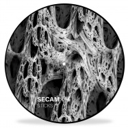 Front View : Secam - STICKS (ONE SIDED PICTURE DISC / INCL D-FUNC RMX) - Konsequent / KSQ065
