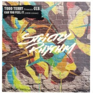 Front View : Todd Terry presents CLS - CAN YOU FEEL IT 2008 - Strictly Rhythm / SR12648