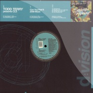 Front View : Todd Terry presents CLS - CAN YOU FEEL IT 2008 - D:Vision / dvsr030