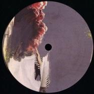 Front View : Yann Polewka - TOUTE LA VIE EP - Roots For Bloom / RFBR019