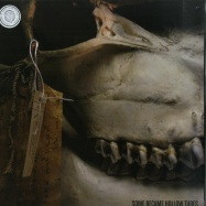 Front View : Some Became Hollow Tubes - KEEP IT IN THE GROUND (LP+DL) - Gizeh Records / GZH090