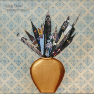 Front View : Sable Blanc - HOMECOMING LP - Salin Records / Salin007