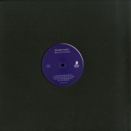Front View : Binary Digit - 38490 ELECTRONICS (VINYL ONLY) - Dream Ticket / DT001