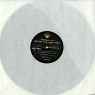 Front View : Paduraru - RHADOO & JON SILVA REMIXES - The Remix Label / RMXLAB1302