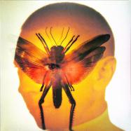 Front View : Maelstrom - RHIZOME (LP) - Raar / RAAR013