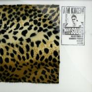 Front View : AM Kinem - MAVI SOUL PT.1 (12INCH LP + 10INCH) - ava. / ava.lp003