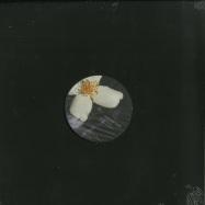 Front View : Various Artists - AKLTD002 (VINYL ONLY) - Ada Kaleh Romania / AKLTD002