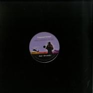 Front View : Amir Alexander - 10TH DEGREE UZI - Vanguard Sound / VS011