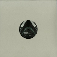 Front View : Niereich / 2000 And One - PHOENIX EP - DRIVING FORCES RECORDINGS / DFR043
