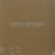 Front View : Arctic Monkeys - LEAVE BEFORE THE LIGHTS COME ON (LTD 7 INCH) - Domino Records / RUG236