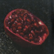 Front View : Perdu - SKYE EP (FT. DJ BORING REMIX) (180 G VINYL, LTD FULL COVER) - Heist Recordings / HEIST038