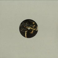 Front View : Riccardo Rizza - AETERNO EP (VINYL ONLY) - Volupso / VOLUPSO006