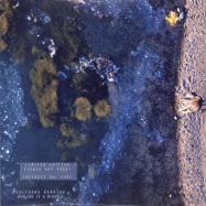 Front View : Julianna Barwick - HEALING IS A MIRACLE (LTD LP+MP3+SIGNED ART PRINT) - Ninja Tune / ZEN265X