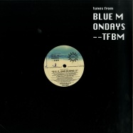 Front View : Blue Mondays - DIG IT UNDERSTAND IT - Tunes from Blue Mondays / TFBM006