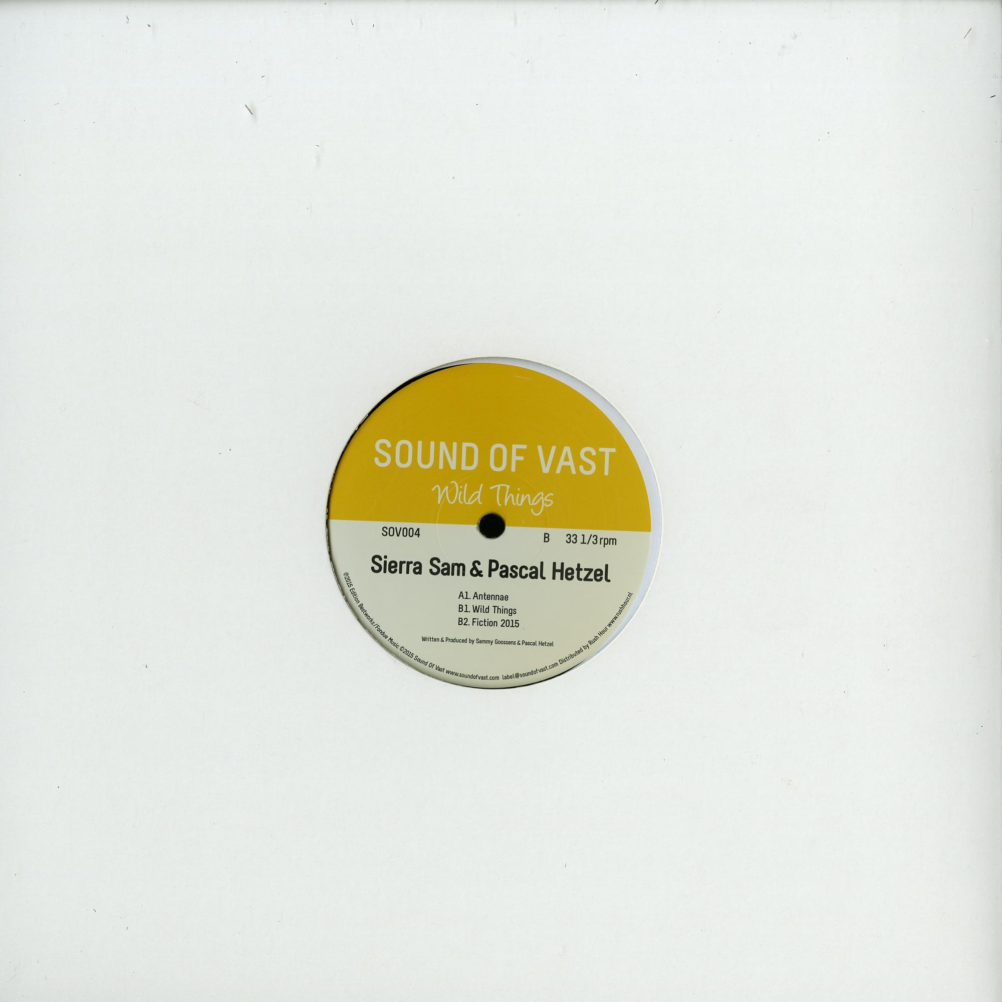 Sierra Sam & Pascal Hetzel - WILD THINGS EP
