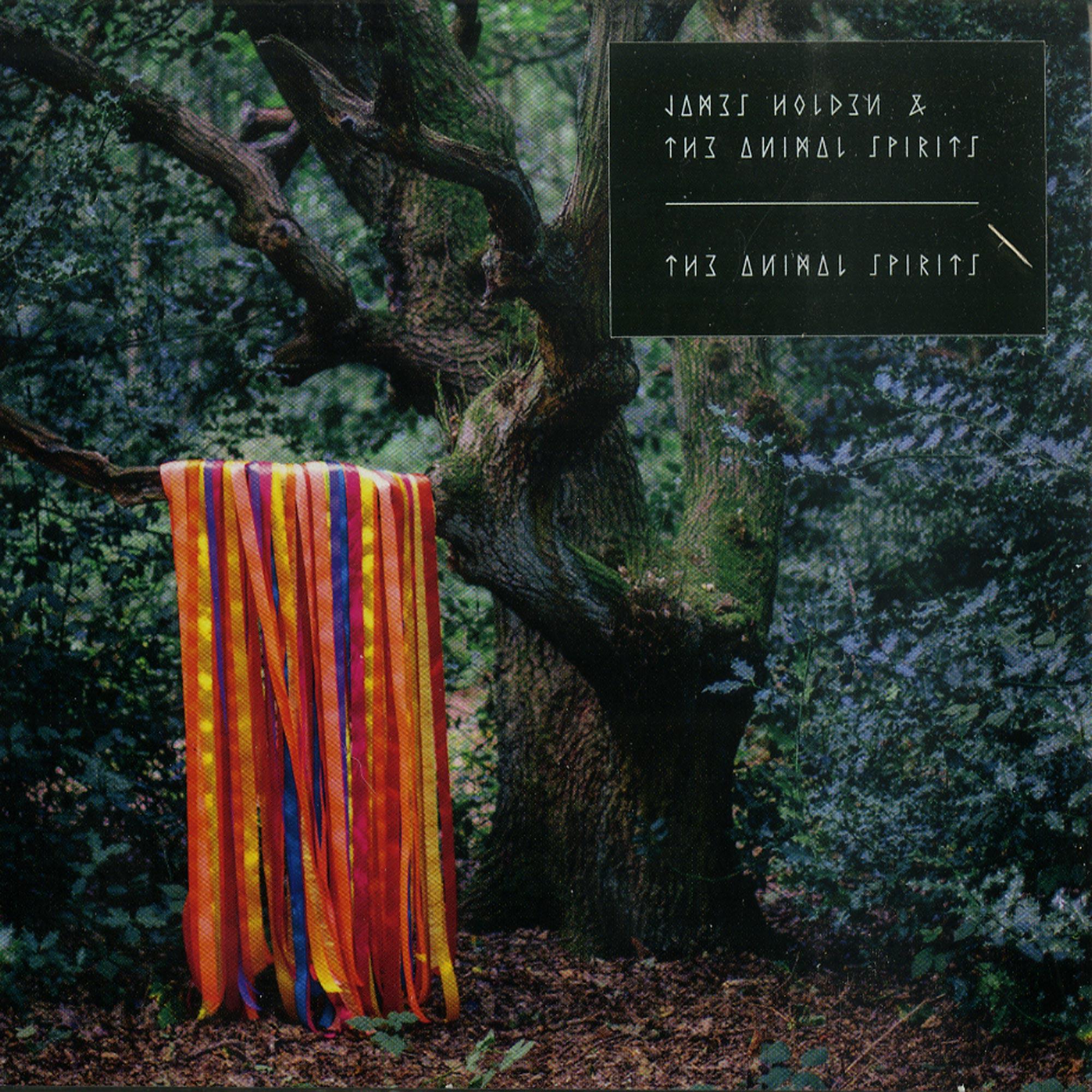 James Holden & The Animal Spirits - THE ANIMAL SPIRITS