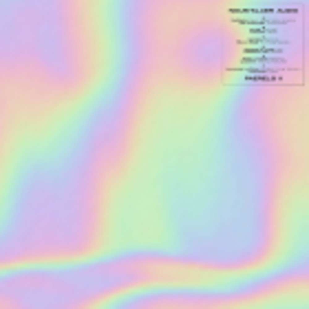 Various Artists - PAERELS II