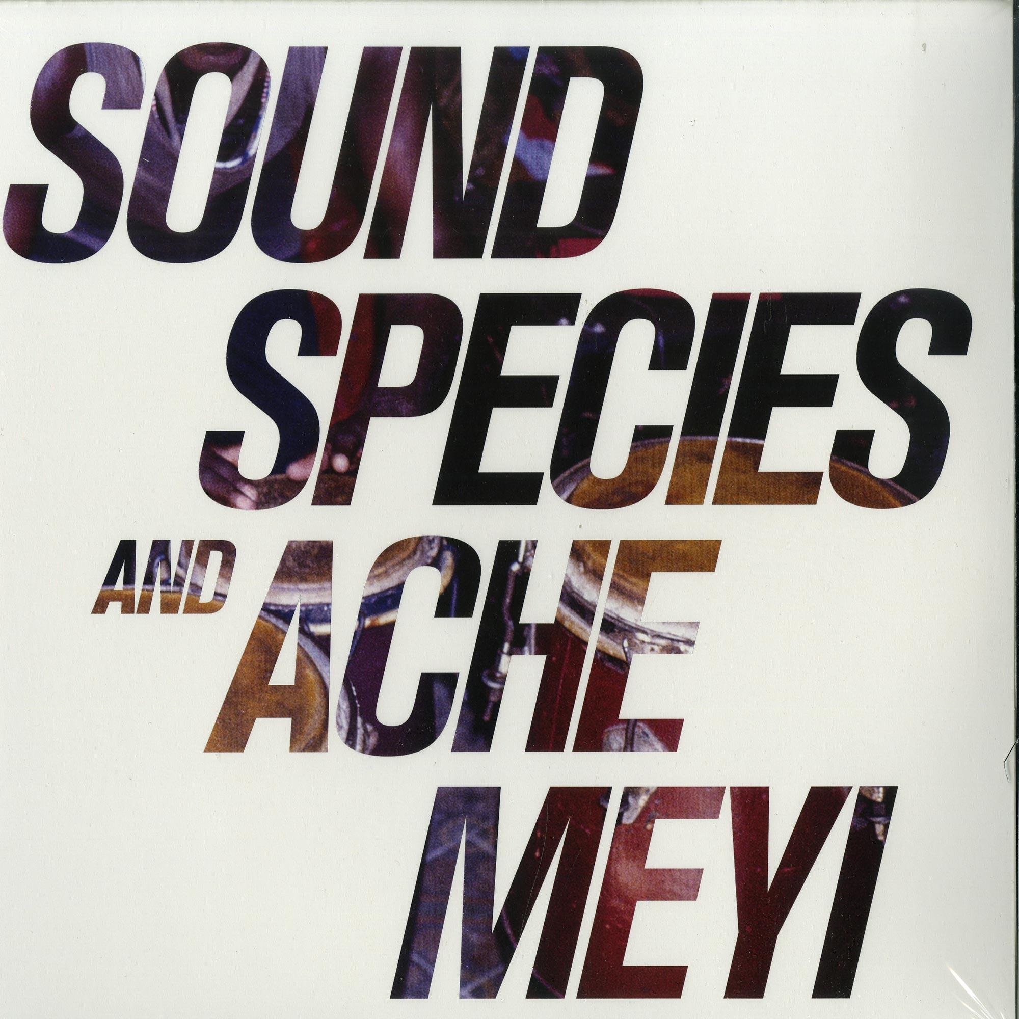 Soundspecies & Ache Meyi - SOUNDSPECIES & ACHE MEYI