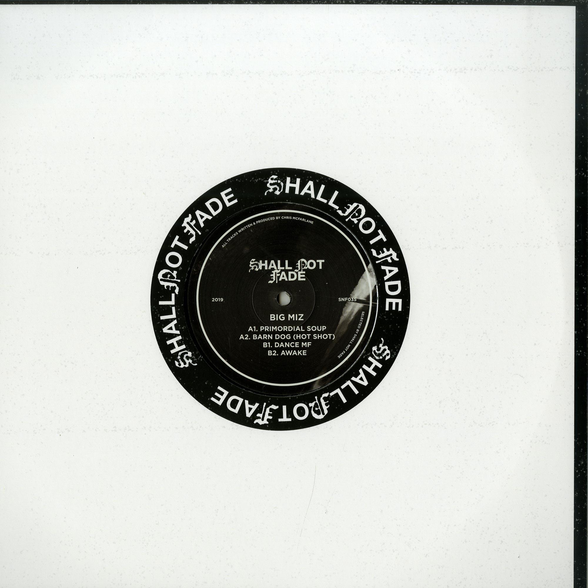 Big Miz - SHORT STORIES EP